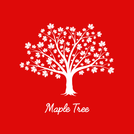 Beautiful white maple tree silhouette on red background. Infographic modern vector sign. Premium quality illustration logo design concept.
