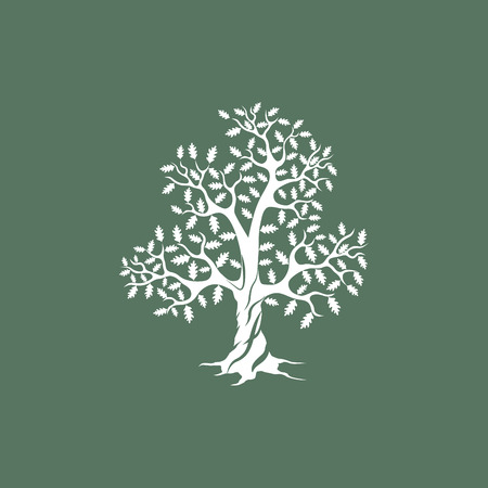 Schöne weiße Eiche Silhouette auf grünem Hintergrund. Moderne Vektor-Zeichen. Premium-Qualität, Illustration, Design-Konzept.