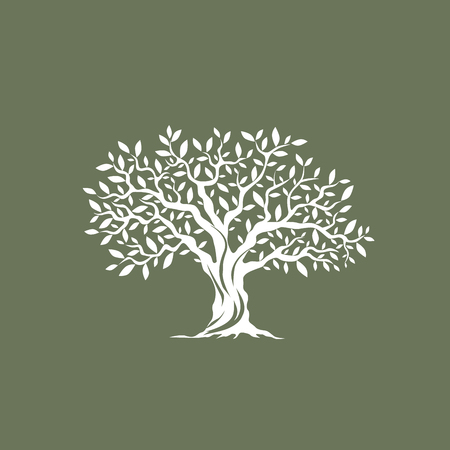 Beautiful magnificent olive tree silhouette on grey background. Infographic modern vector sign. Premium quality illustration  design concept.