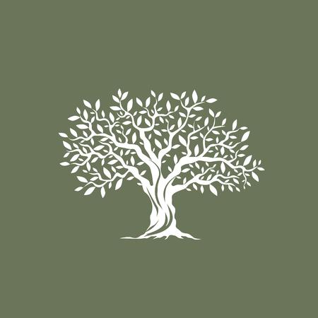Piękny wspaniały drzewo oliwne sylwetka na szarym tle. Infografika nowoczesny znak wektora. Jakość ilustracja koncepcja Premium.