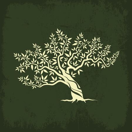 Bella magnifico ulivo silhouette icona isolato su sfondo verde.
