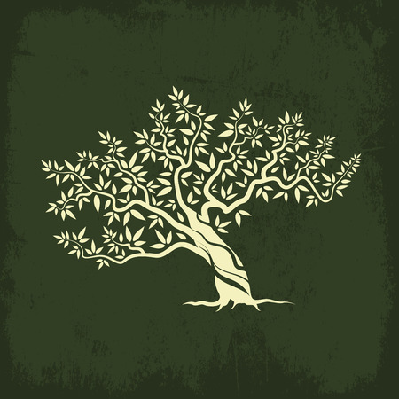 Beautiful magnificent olive tree silhouette icon isolated on green background.
