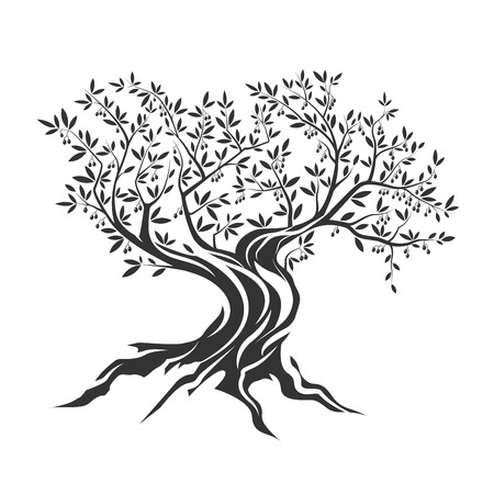 religion  herb: Olive tree silhouette icon isolated on white background.