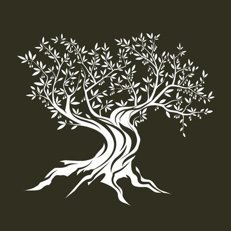 Olive albero silhouette icona isolato su sfondo verde. Vettoriali