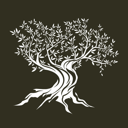 Olive tree silhouette icon isolated on green background. Illustration