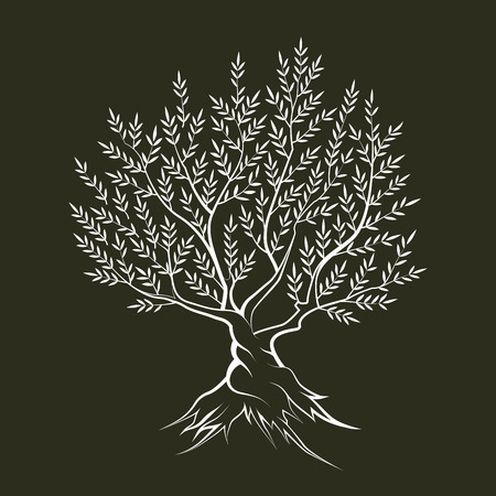 Olive tree outline silhouette icon isolated on dark background