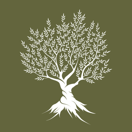religion  herb: Olive tree silhouette icon isolated on green background. Illustration