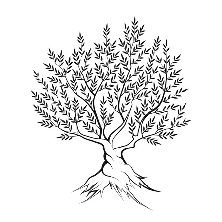 religion  herb: Olive tree outline silhouette icon isolated on white background.