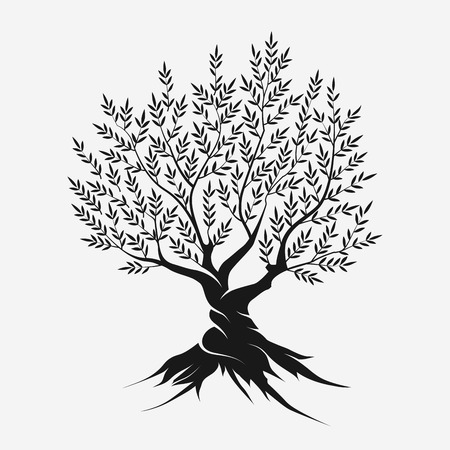 religion  herb: Olive tree silhouette icon isolated on gray background.
