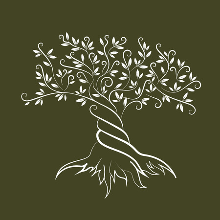 religion  herb: Olive tree outline curl silhouette icon isolated on green background. Web graphics stroke modern vector sign. Illustration