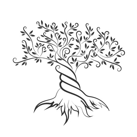 Olive tree outline curl silhouette icon isolated on white background. Illustration