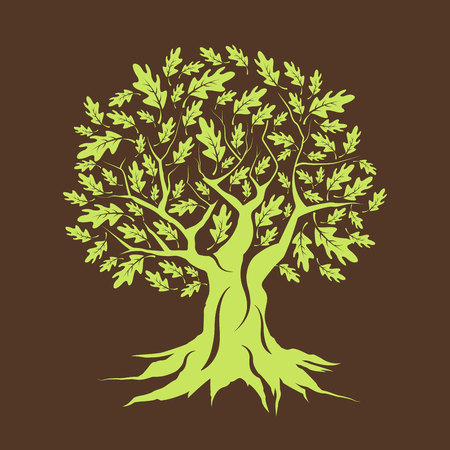 Beautiful green oak tree silhouette isolated on brown background. Illustration