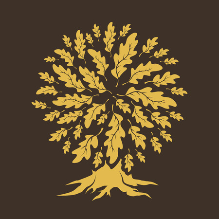 Beautiful oak tree silhouette isolated on brown background.