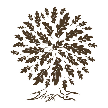 Beautiful brown oak tree silhouette isolated on white background.