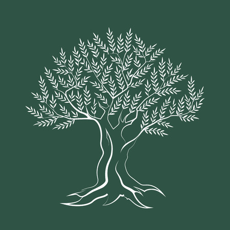 Olive tree outline silhouette icon isolated on green background.