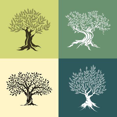 arbres silhouette: Oliviers silhouette isolé, icône, ensemble.