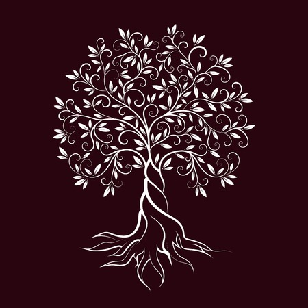 religion  herb: Olive tree outline curl silhouette icon isolated on burgundy background. Web graphics stroke modern vector sign. Illustration