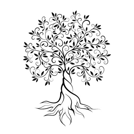 Olive tree outline curl silhouette icon isolated on white background. Web graphics stroke modern vector sign.
