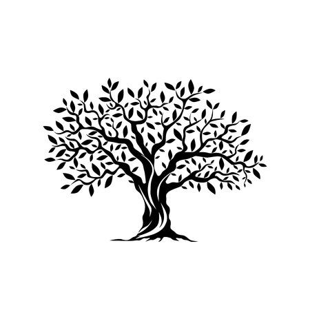 Drzewo oliwne sylwetka ikona na białym tle. Ilustracje wektorowe
