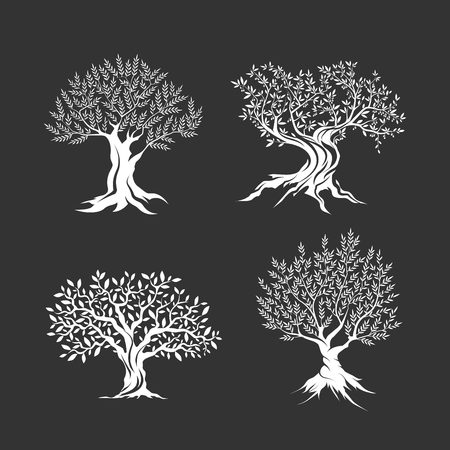 Olive trees silhouette icon set isolated Banco de Imagens - 69594427