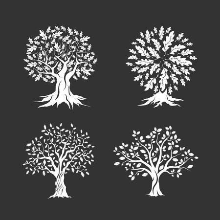 big cork: Beautiful oak trees silhouette set isolated on dark background. Web infographic modern vector sign. Premium quality illustration logo design concept.