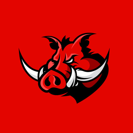 Furious boar head sport club vector logo concept isolated on red background.