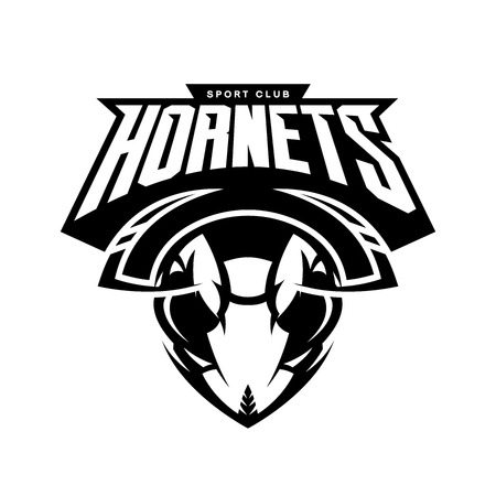 Furious hornet head of an athletic club vector logo concept isolated on white background. Modern sport team mascot badge design. Premium quality wild insect emblem t-shirt tee print illustration.
