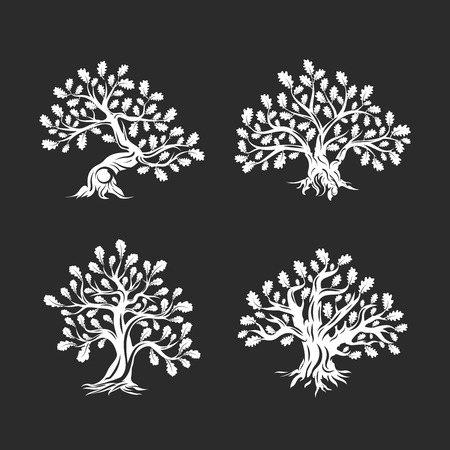 Huge and sacred oak tree silhouette isolated on black background. Vectores