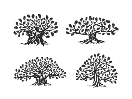 Huge and sacred oak tree silhouette logo isolated on white background. Modern vector national tradition green plant icon sign design set. Premium quality organic logotype flat emblem illustration.