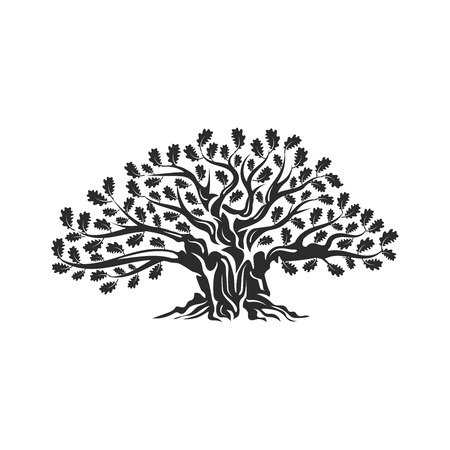 Huge and sacred oak tree silhouette logo badge isolated on white background. Modern vector national tradition. Premium quality organic logotype flat emblem illustration.