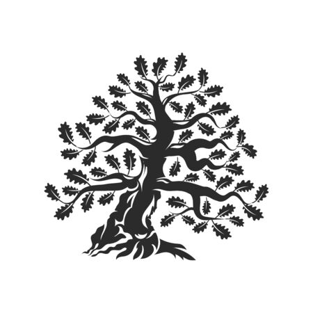 Huge and sacred oak tree silhouette  badge isolated on white background.