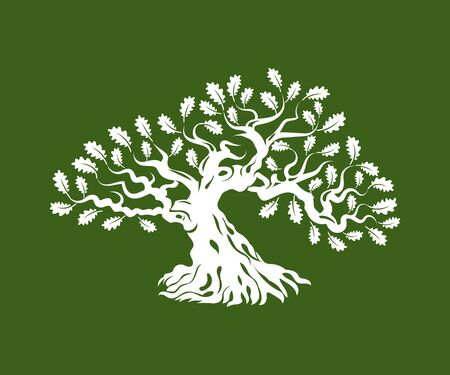 Huge and sacred oak tree silhouette badge isolated on green background.