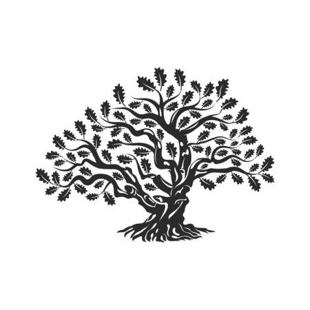 거 대 하 고 신성한 오크 나무 실루엣 로고 배지 흰색 배경에 고립.