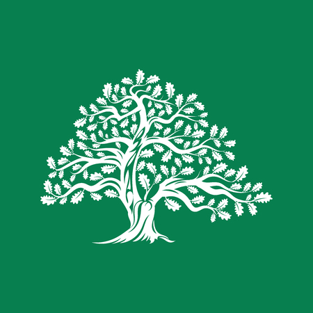 Huge and sacred oak tree silhouette logo badge isolated on green background. Illustration