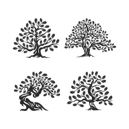 Enorm en heilig eiken silhouet silhouet logo geïsoleerd op een witte achtergrond. Moderne vector nationale traditie groene plant pictogram teken ontwerpset. Premium kwaliteit organische bonsai logo vlakke afbeelding. Logo