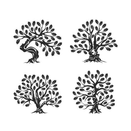 Logo de silhouette énorme et sacré chêne isolé sur fond blanc. Ensemble de conception moderne vecteur national tradition plante verte icône signe. Illustration plat de logo bonsaï bio de qualité Premium. Banque d'images - 92262079