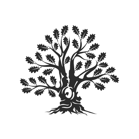 Huge and sacred oak tree silhouette icon badge on white background. Modern vector national tradition. Premium quality organic bonsai icon flat illustration.