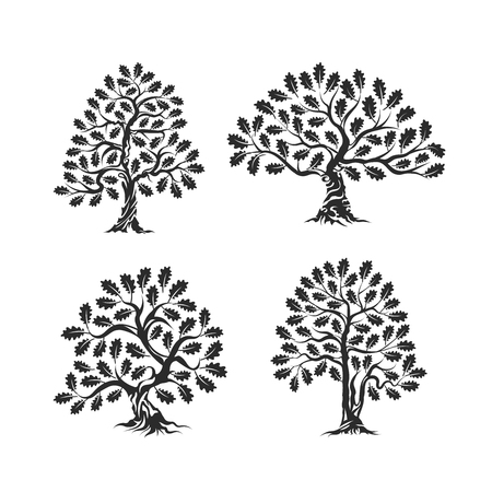 Huge and sacred oak tree silhouette logo isolated on white background  イラスト・ベクター素材