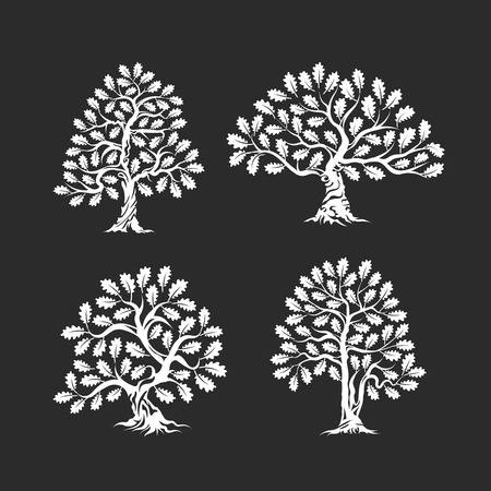 Huge and sacred oak tree silhouette icon, isolated on dark background.