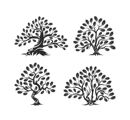 Huge and sacred oak tree silhouette logo isolated on white background.