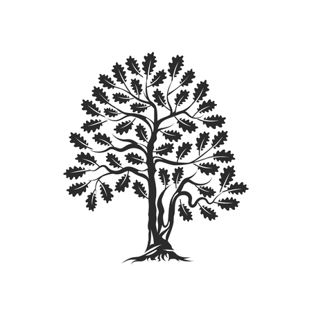 Huge and sacred oak tree silhouette logo badge isolated on white background Çizim