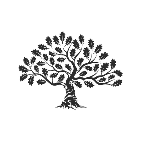 Huge and sacred oak tree silhouette icon badge, isolated on white background.