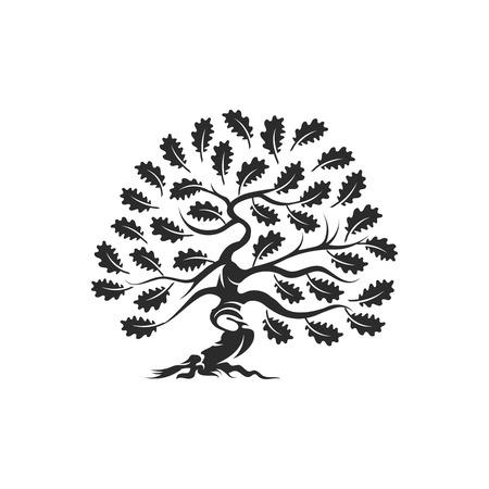 Huge and sacred oak tree silhouette vector illustration Çizim