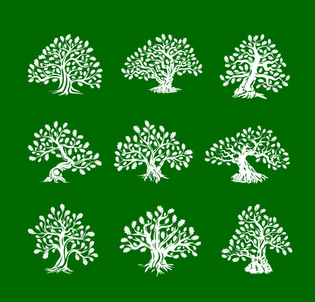 Huge and sacred oak tree silhouette logo isolated on green background.