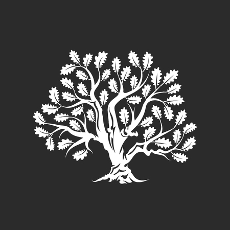 Huge and sacred oak tree silhouette icon badge isolated on dark background.