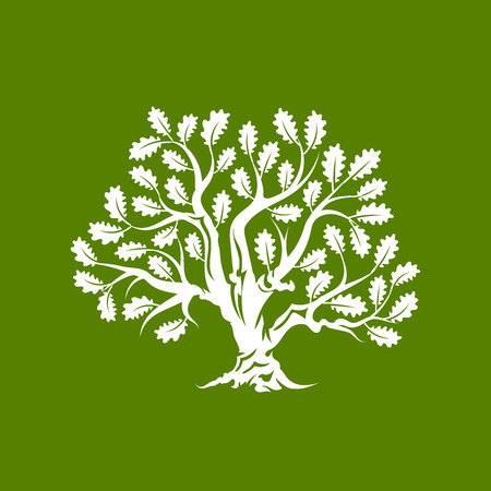 Huge and sacred oak tree silhouette icon badge isolated on green background. Illustration