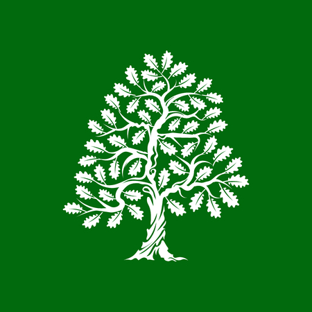 Huge and sacred oak tree silhouette icon badge isolated on green background. Çizim