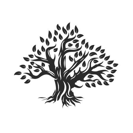 Organisch natuurlijk en gezond olijfboomsilhouet dat op witte achtergrond wordt geïsoleerd.