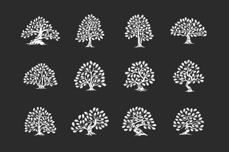 Huge and sacred oak tree plant silhouette icon isolated on dark background set. Stock Illustratie