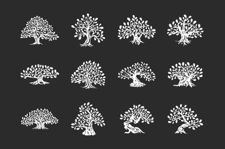 Huge and sacred oak tree plant silhouette icon isolated on dark background set.